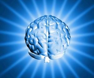 meditacao-cerebro-300x250